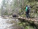 Thumbnail for image 16316