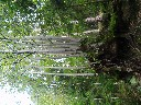 Thumbnail for image 17867