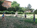 Thumbnail for image 26980