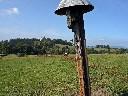 2009-09-19_15-37 svatý obrázek u Dolní Hedče s klá